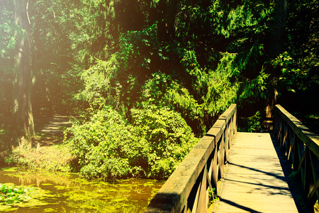 Vintage photo of retro bridge in the forest