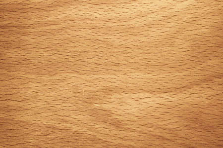 grained: Vibrant color beech wood grained texture