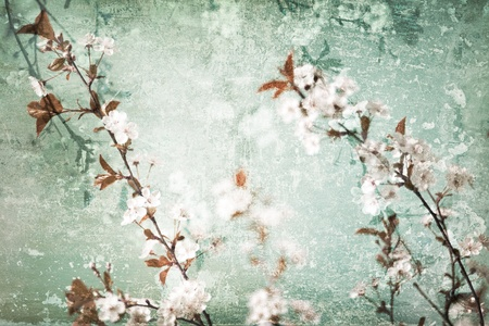 Grunge floral scratched textured background with flowers blossom Stock Photo