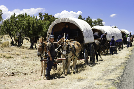pioneers: Tucson, Arizona, USA - April 26,2006   male juvenile traveling on covered wagons drawn by mules over the Western states  Wagon Train trips are operated by the VisionQuest rehabilitation program for youths in difficulties