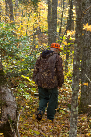 atmosphere: Senior hunter walking on the deer track by an Autumn day. Great atmosphere scene, Quebec. Canada Stock Photo