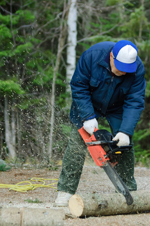 logger: Active senior cutting a fallen tree with the chain saw - motion picture, Quebec, Canada Stock Photo
