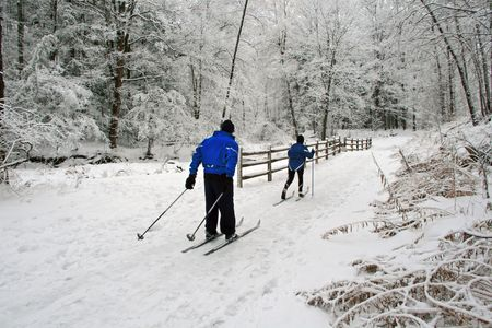 A couple cross-country ski amid a recent beautiful snowfall.