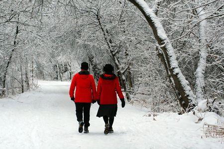 カップル最近の美しい雪の中で冬のトレイルをハイキングします。