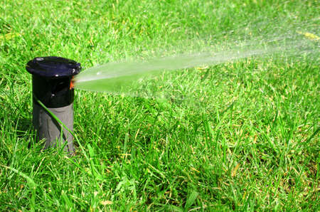 working lawn sprinkler