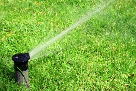 maintain: working lawn sprinkler