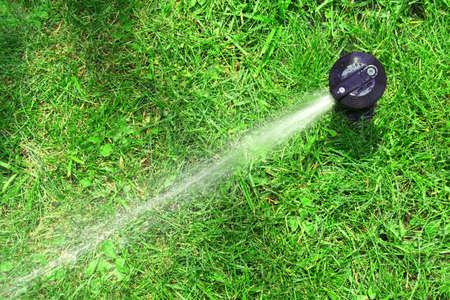 lawn sprinkler: working lawn sprinkler