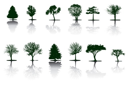 Vector trees   Stock Vector - 3822313