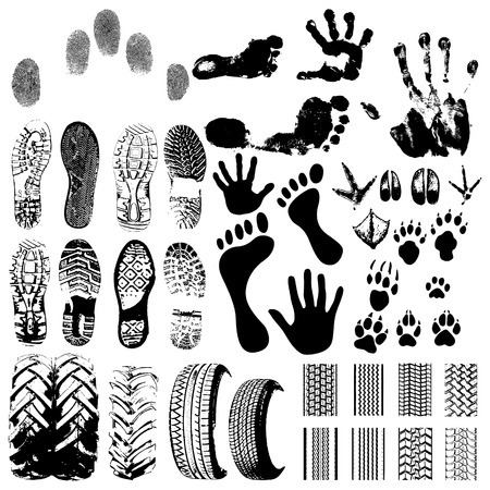 Handprints, Footprints, Animal handprints and wheels - vector on white Vector
