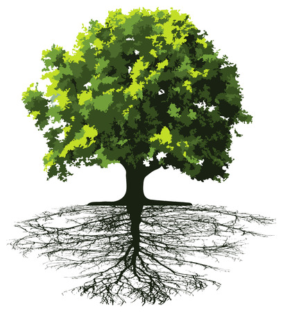 Trees with roots. This image is a vector illustration and can be scaled to any size without loss of resolution.  Vector