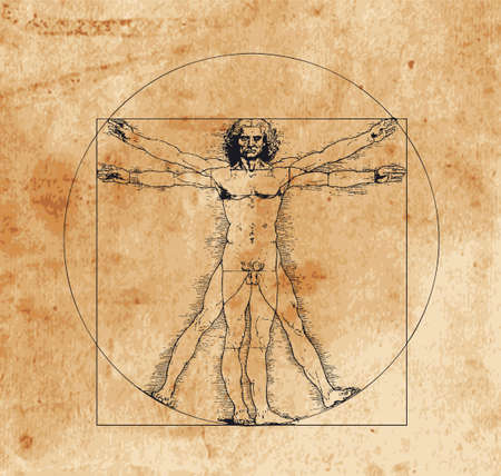 body parts: A highly stylized drawing of vitruvian man with crosshatching and sepia tones