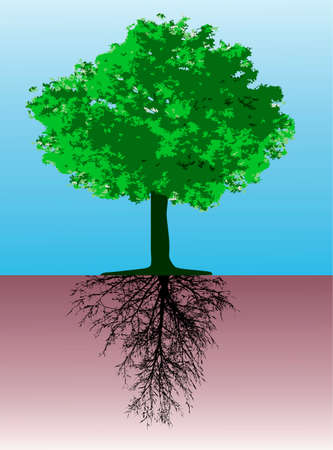 Tree with roots - This image is a vector illustration and can be scaled to any size without loss of resolution Vector