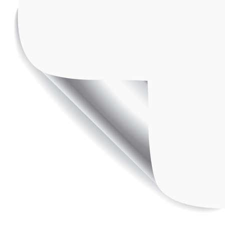 Vector white page corner. Vector