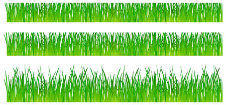 Grass. This image is a vector illustration  Vector