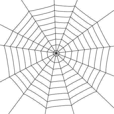 spider: illustration with spider web isolated on white background