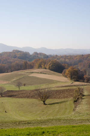 Landscape view in Croatia(Zagorje), fields and trees in autumn Stock Photo - 8159677