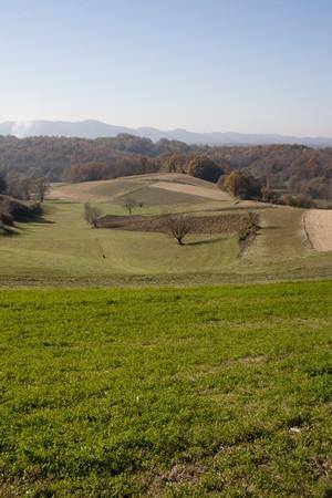 Vista del paesaggio in Croatia(Zagorje), campi e alberi in autunno