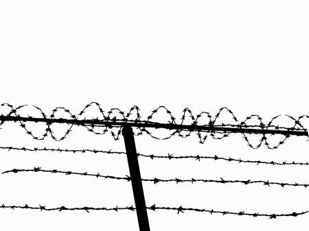 metal wire: Razor wire fence - Vector image from a low angle Illustration
