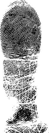 Full Finger FingerPrint (Very Detailed Vector Image) Vector