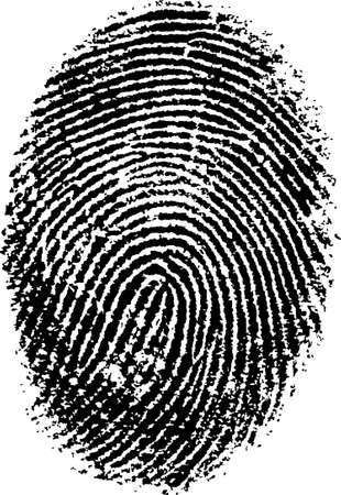 biometric: Black and White Vector Fingerprint - Very accurately scanned and traced ( Vector is transparent so it can be overlaid on other images, vectors etc.) Illustration