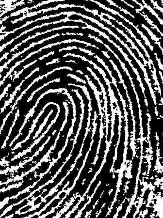 forensics: Black and White Vector Fingerprint Crop - Very accurately scanned and traced ( Vector is transparent so it can be overlaid on other images, vectors etc.)