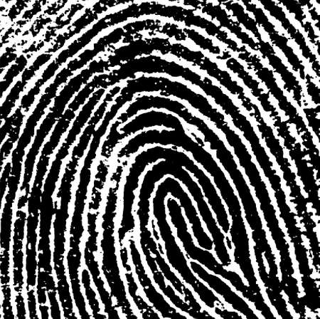 Black and White Vector Fingerprint Crop - Very accurately scanned and traced ( Vector is transparent so it can be overlaid on other images, vectors etc.) Vector
