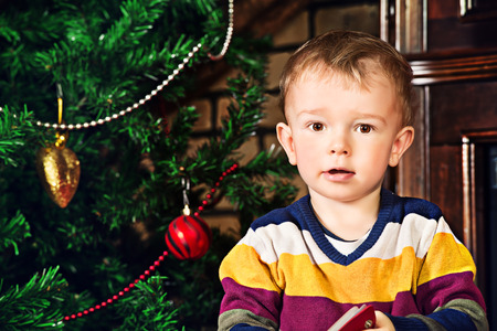 Portrait of a little boy at home near the Christmas tree. Stock Photo - 23979008