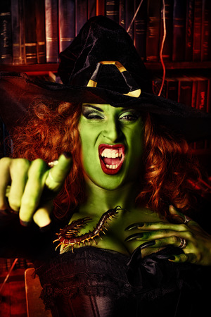 witchery: Close-up portrait of a fairy wicked witch in the wizarding lair. Magic. Halloween. Stock Photo