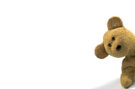 Teddy bear looking in from the right of frame, white background for text