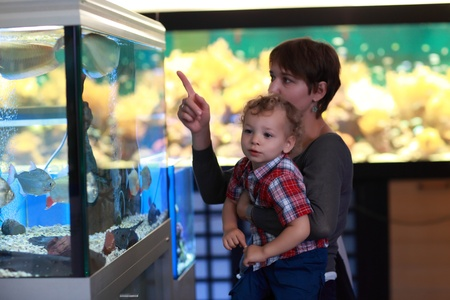Mother and boy are looking at fish at aquarium photo