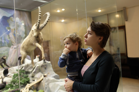 zoological: Mother tells her son about mountain sheep in zoological museum Stock Photo