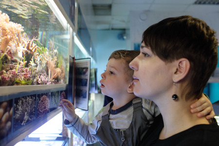 Mother with son watching fishes at an oceanarium Stock Photo - 27118765