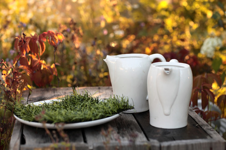 Two white pitchers on a wooden table in the autumn park photo