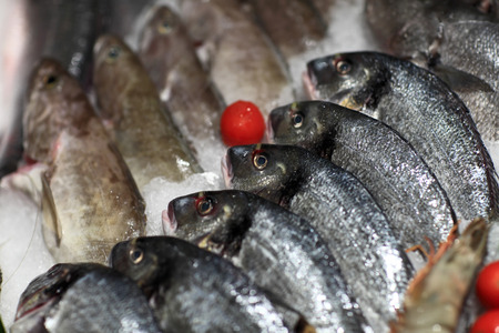 Details of fresh fishes on the ice at a market photo