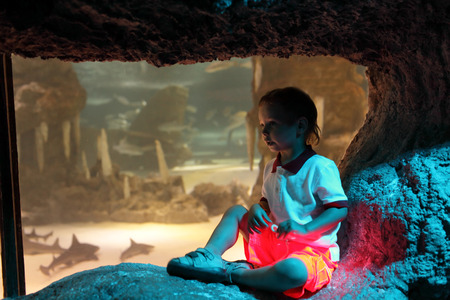 The boy watching tropical fishes in oceanarium photo