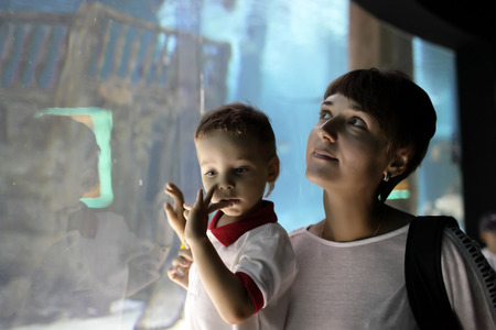Family watching a marine life at oceanarium photo