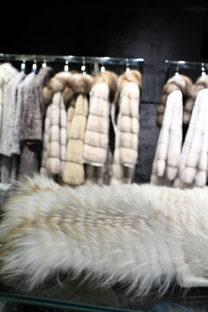 white fur: Fragmento de pelaje blanco en la tienda