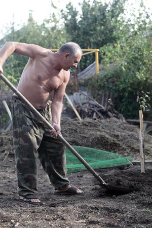 Man planting seedling of fruit tree in garden photo