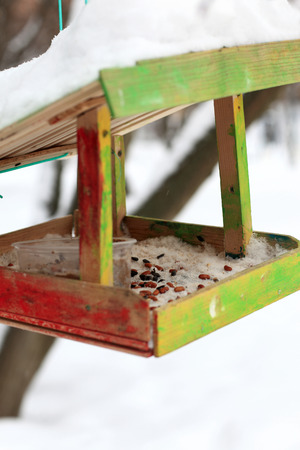 feeders: Wooden bird feeders in the winter park