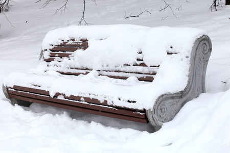 The snowy bench in the winter park photo