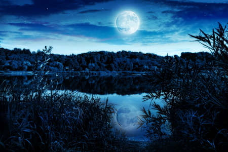 moonlight: Night landscape