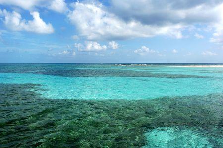 unspoiled: La barrera de coral en Belice, el segundo m�s grande del Mundo.