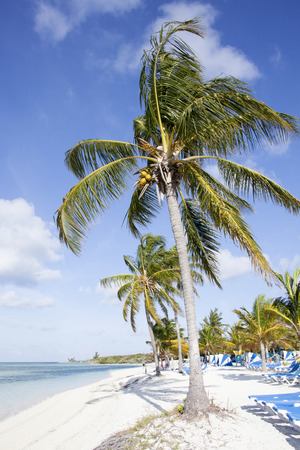 cay: Morning view of still empty beach on Little Stirrup Cay (The Bahamas). Stock Photo
