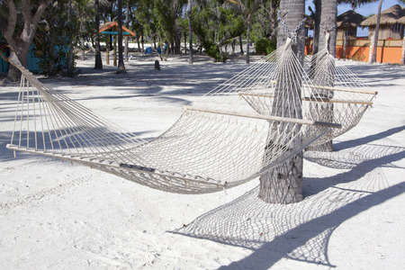 cay: Close view of a hammock on tourist island Little Stirrup Cay (The Bahamas).