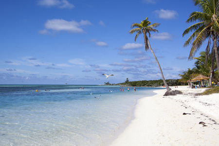 cay: Morning view of the beach on Little Stirrup Cay (The Bahamas). Editorial