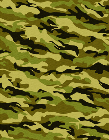 Camouflage 1 photo