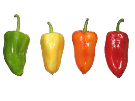 four peppers of different colors isolated photo