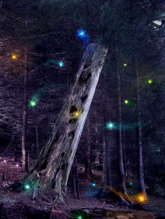 enchanted forest: Fairies flying around the mysterious tree trunk