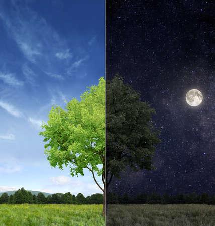 dia y noche: Día y noche concepto Foto de archivo