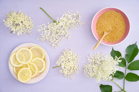lemon slices: Elderflowers, sugar and lemon slices for making elderflower syrup Stock Photo
